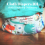 Cloth Diapering Dictionary